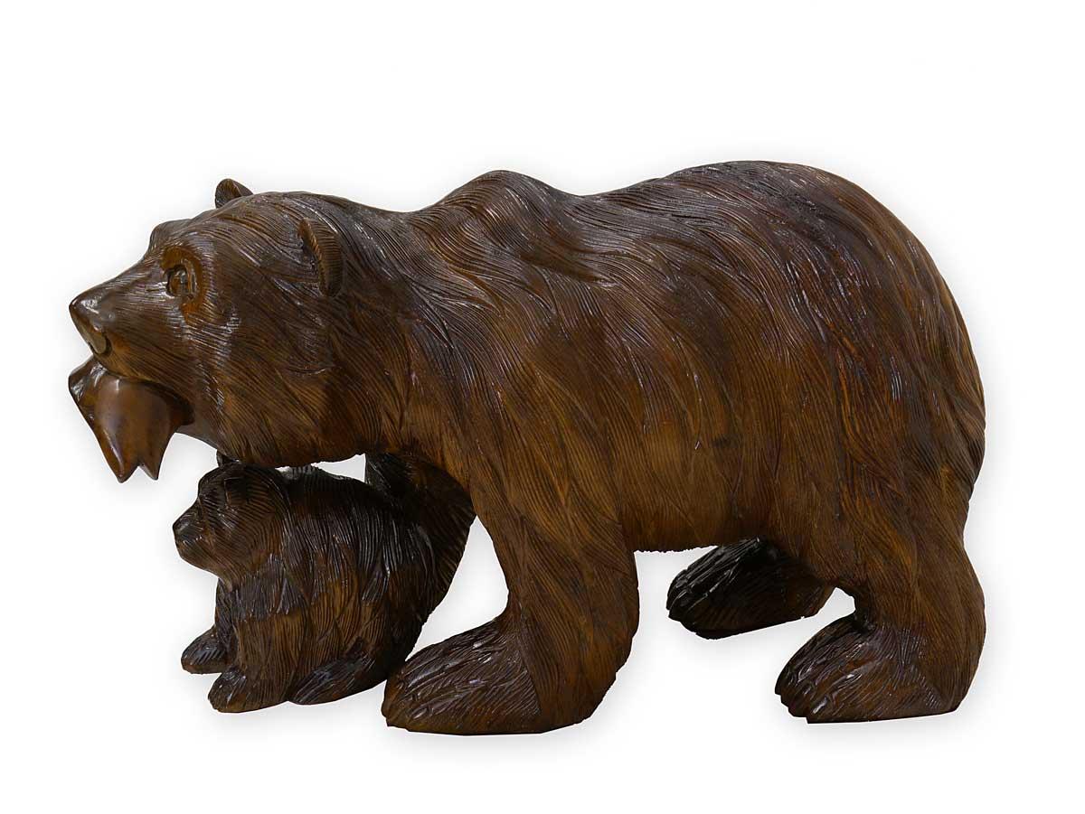 Nahaufnahme vom Bären