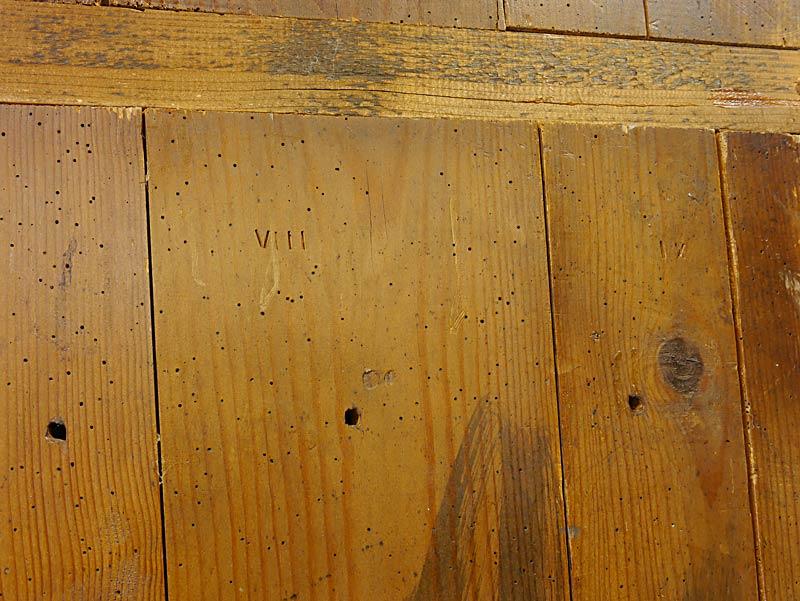 Spuren alten Wurmbefalls